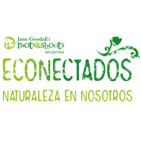 LOGO-ECONECTADOS-roots-2