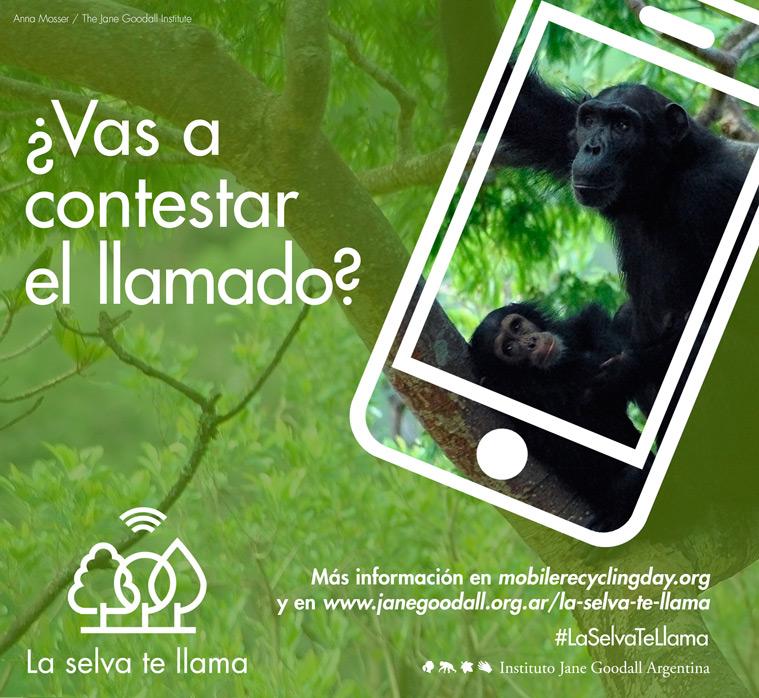 la-selva1