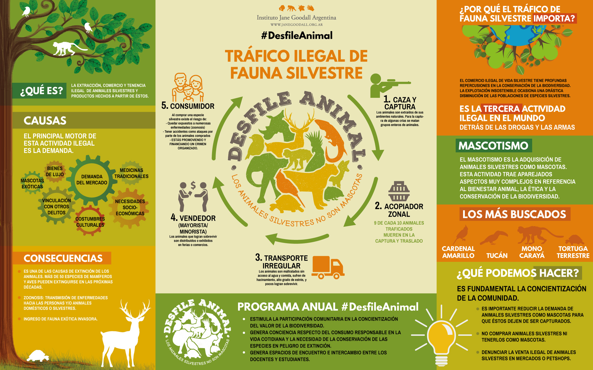 infografía_trafico-de-fauna-PRINT