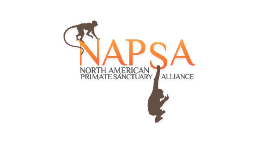 Posición de NAPSA frente a la tenencia de chimpancés como mascotas