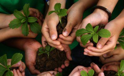 La Educación Ambiental en la Argentina