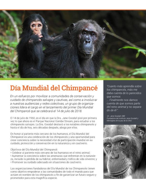 Brochure-dia-del-chimpa
