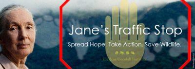 Jane le dice ALTO AL TRÁFICO