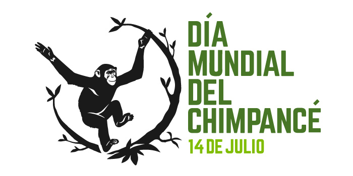 WCD-Logo-Español