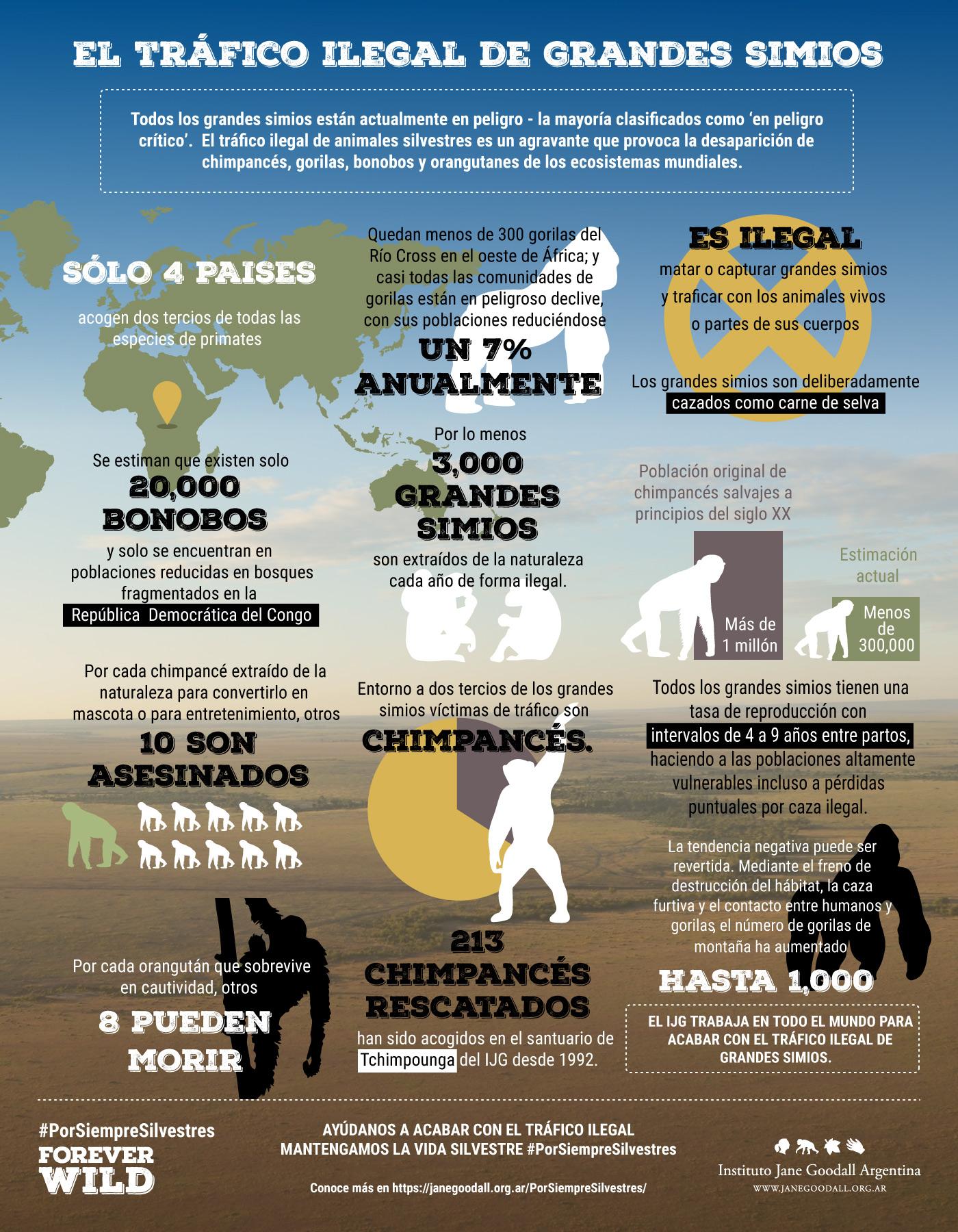 apes-trade-infographic-espanol